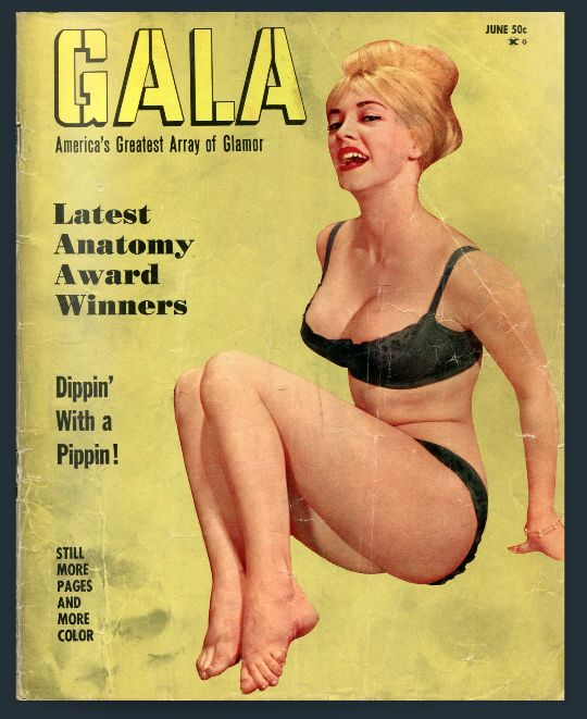 Simply does Vintage adult magazines not